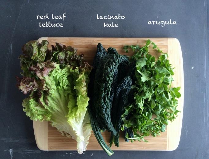 red leaf, kale, arugula