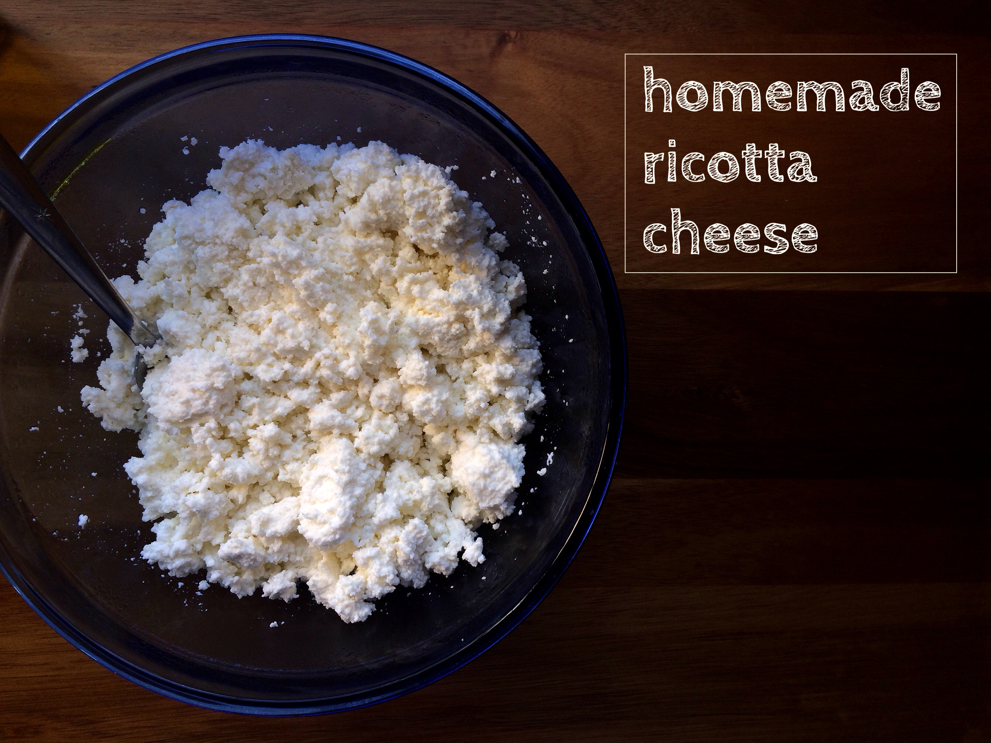 Homemade Ricotta Cheese and Ricotta-mole | the Seasonal ...