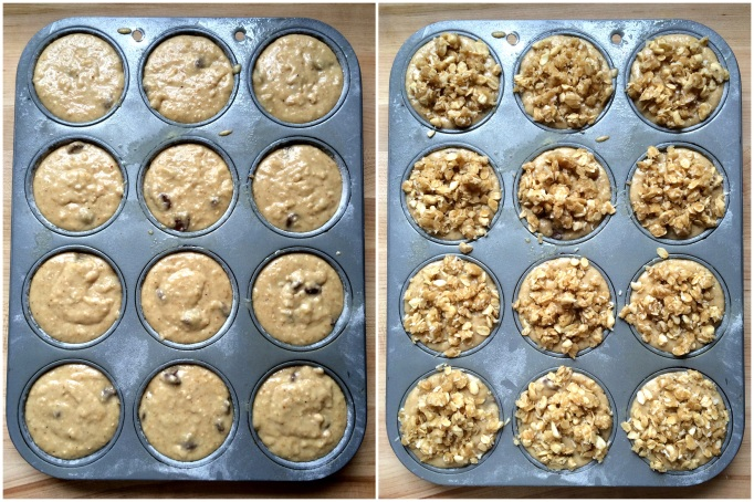 Chocolate Chip Coconut Oat Muffins