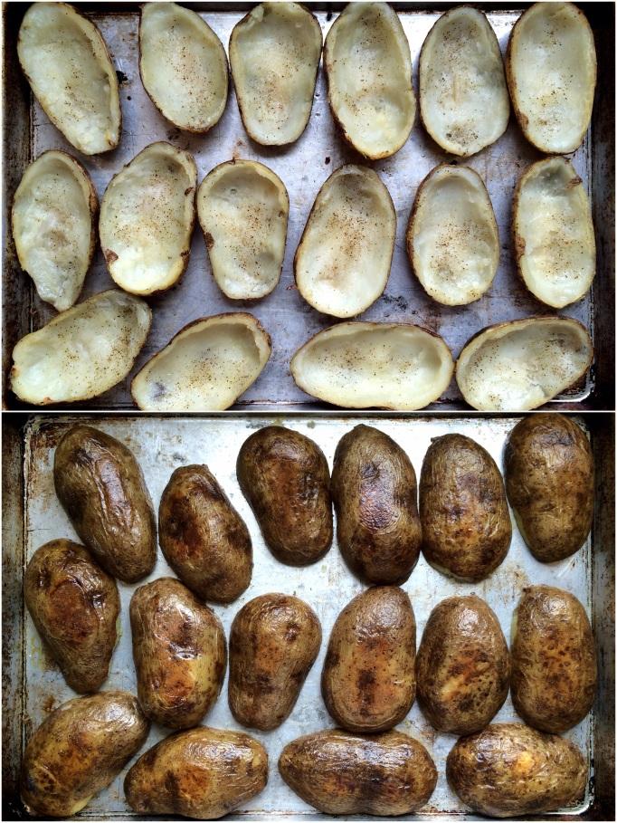Shepherd's Pie Potato Skins